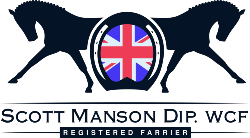 Farrier in Gloucestershire - Scott Manson